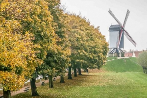 Bruges' City Ramparts-7